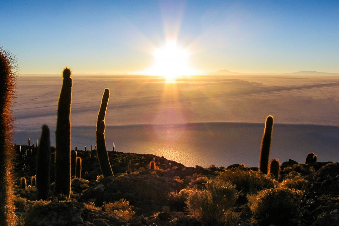 A Photograph Showing The Sun Rising Over Salar De Uyuni (the Salt Flats) In Bolivia With Cacti In The Foreground, Taken From Incahuasi Island