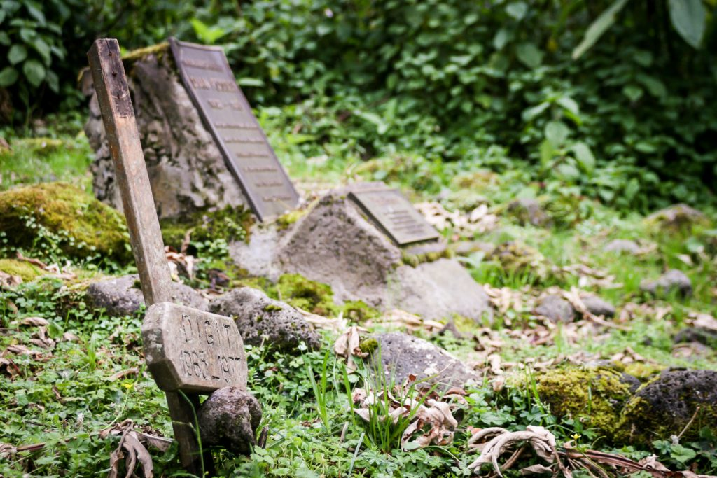 A photograph showing the grave and headstone of Digit, a mountain gorilla who died in 1977 in the Volcanoes National Park, Virunga Mountains, Rwanda, with Dian Fossey's grave in the background.