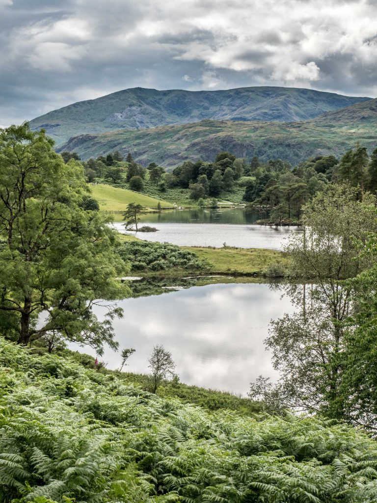 A photograph of Tarn Hows from my Lake District photography tour.