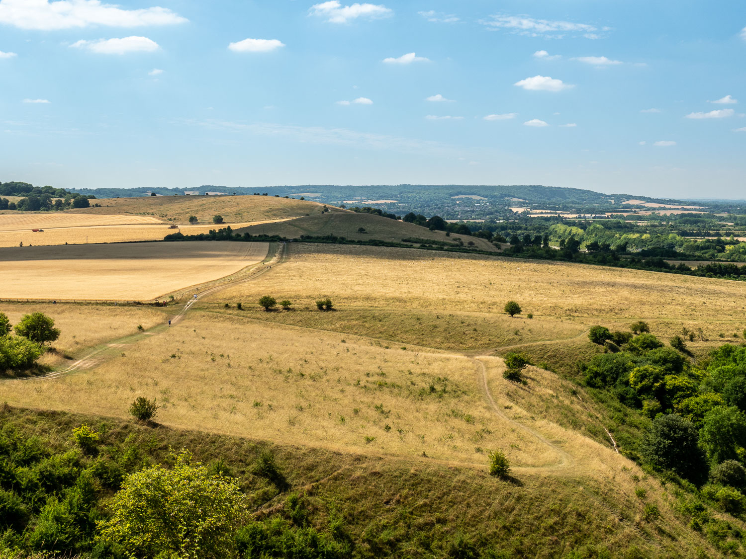 A Landscape Photograph Showing Fields Of Grass And Crops, Taken From Ivinghoe Hills In The Chilterns.